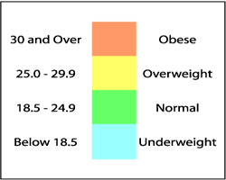 below 18.5 is underweight, 18.5 to 24.9 is normal, 25.0 to 29.9 is overweight, 30 or over is obese